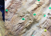 ROCK CLIMBING WALL > Scale our 30 ft wall with 9 challenging routes